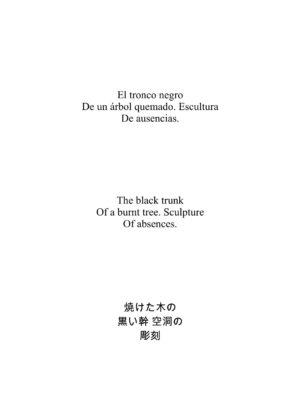 Haiku Gustavo Vega 3.1