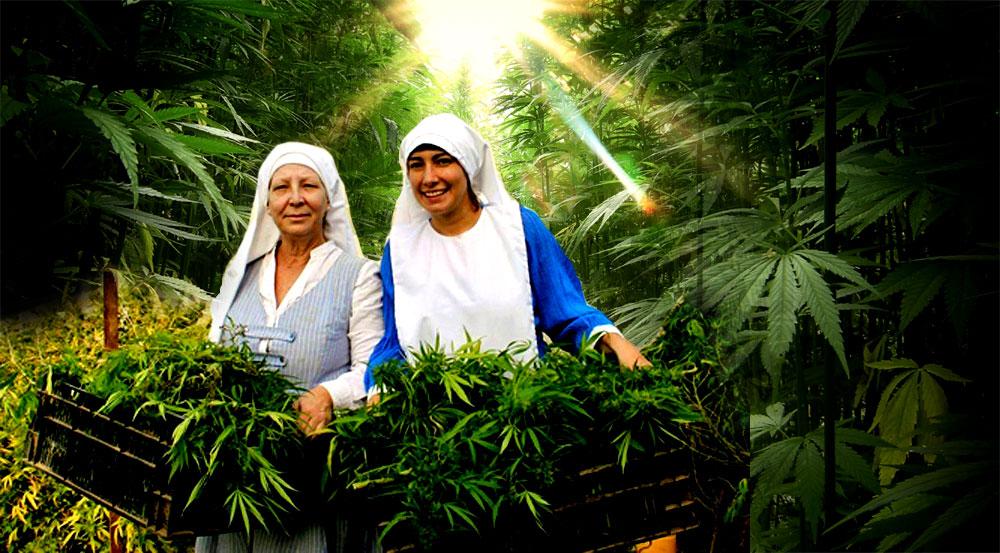 monjas de marijuana