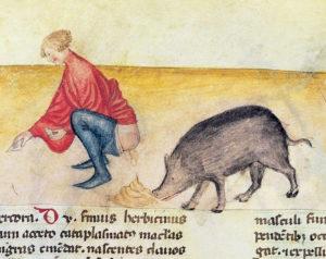 medieval shit